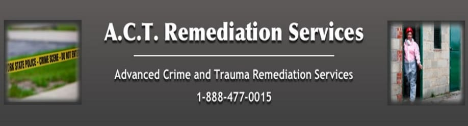 SEOWall Client ACT Remediation